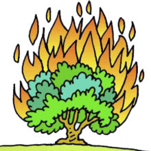 burning-bush-clipart-450sq